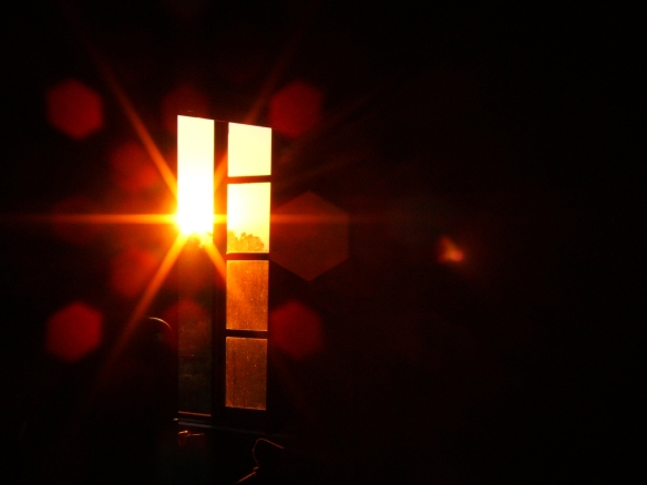 sunny-glass-1560875