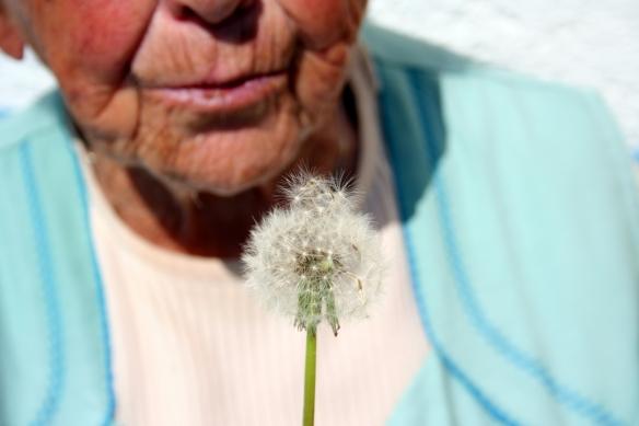 grandma-1-1433085