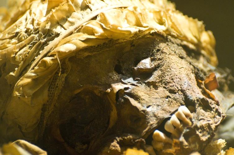 the-mummy-1-1414492